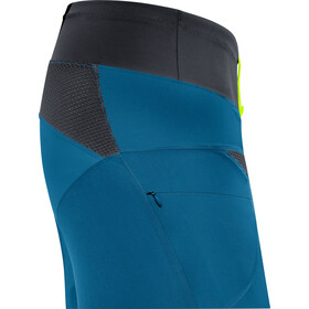 GORE WEAR C5 Trail Light Shorts Herren sphere blue